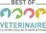 logo-best-of-site