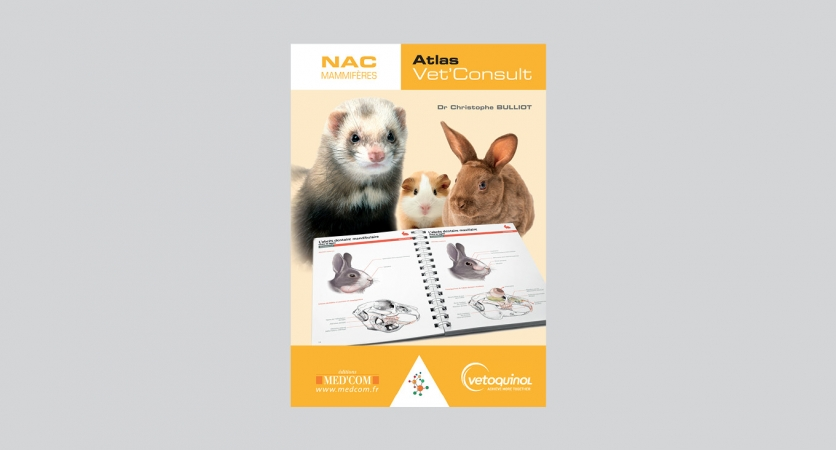 Atlas Vet'Consult NAC – Vetoquinol